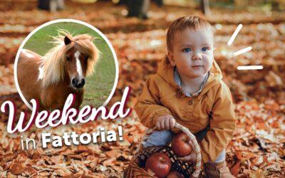 Un altro weekend in fattoria
